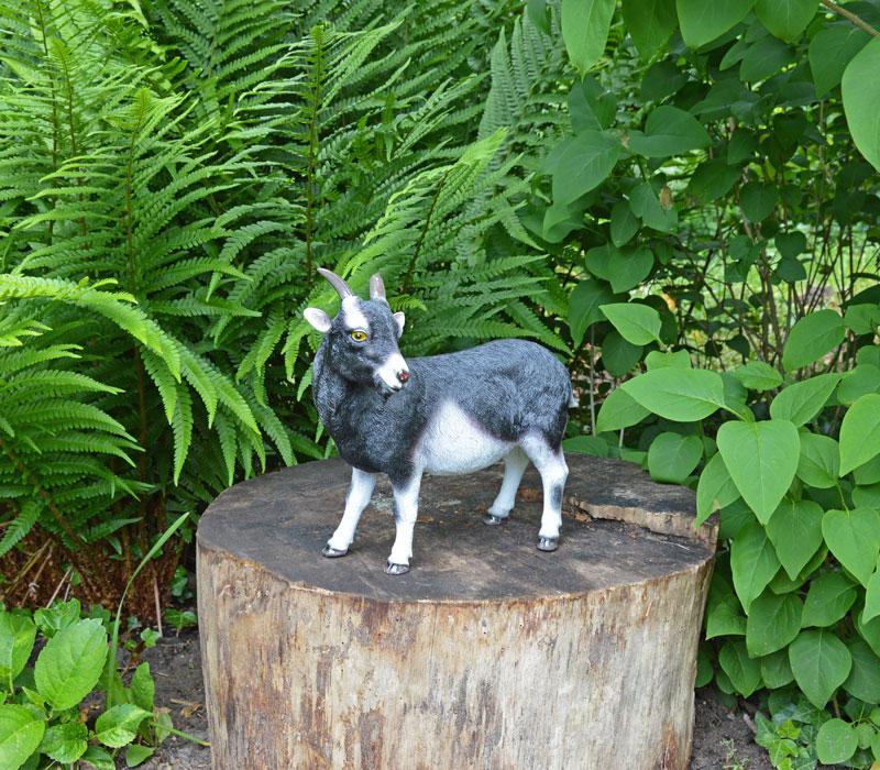 van een geit voor de echte liefhebber. Het tuinbeeld van de geit