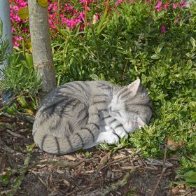 tuinbeeld-kat-lig-grijs