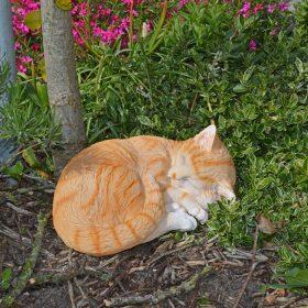 tuinbeeld-kat-lig-oranje