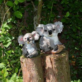 Koala beeld