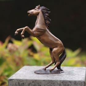 Bronzen steigerend paard