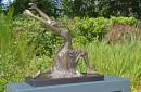 bronzen beeld ballerina zijkant