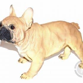 Franse-Bulldog-beeld