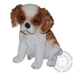 Beeld-cavalier-king-charles-pup