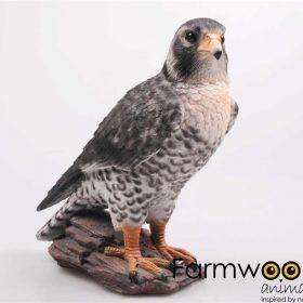 roofvogel beeld