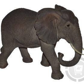 olifanten beelden kopen