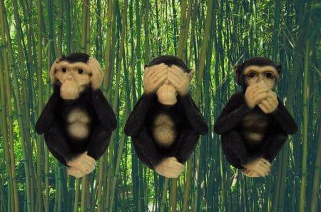 apen horen zien zwijgen