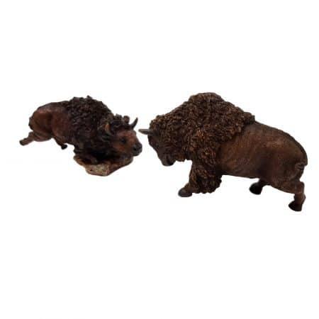 bizon beeld