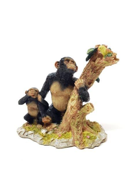 Apen bij boom
