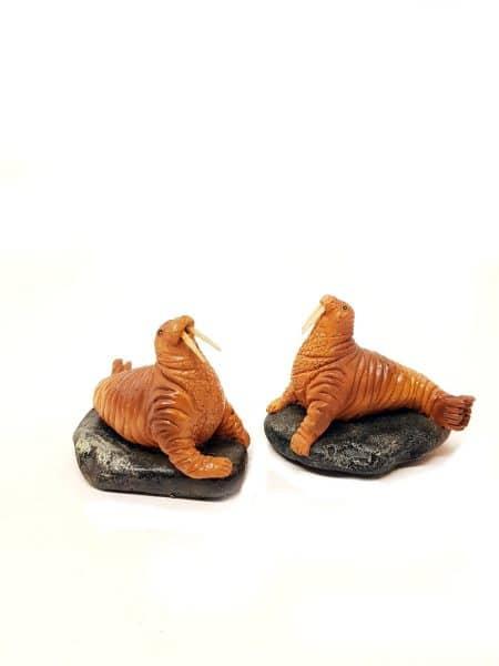 Walrussen beeld
